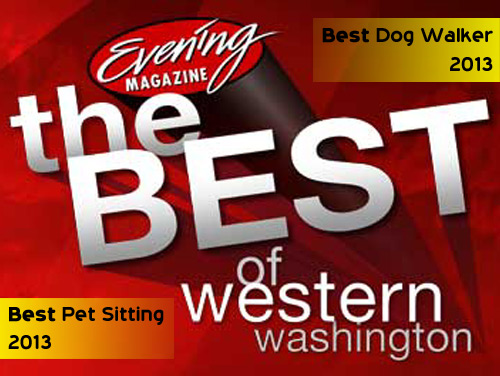 Best Of Western Washington, BEST Dog Walker, BEST Pet Sitting