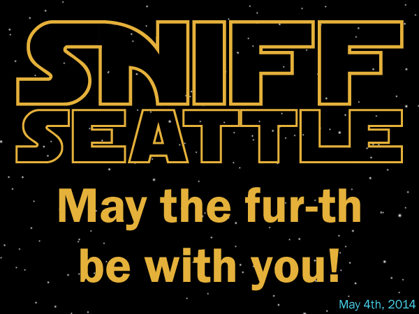 May The Fourth, Star Wars, May The Fur-th Be With You!