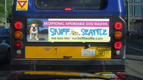 King County Metro Transit, Sniff Seattle Bellevue Dog Walkers, Bus Board