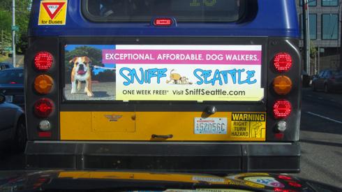 King County Metro Transit, Sniff Seattle Bellevue Dog Walkers, Bus Board
