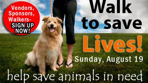 Sniff Seattle Redmond Dog Walkers, Pasado's Safe Haven, Bark At Marymoor Park 2012
