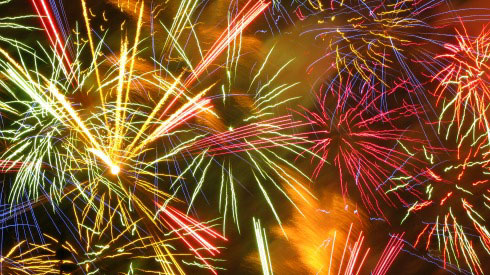 Seattle Fireworks, Lake Union, Dogs And Fireworks