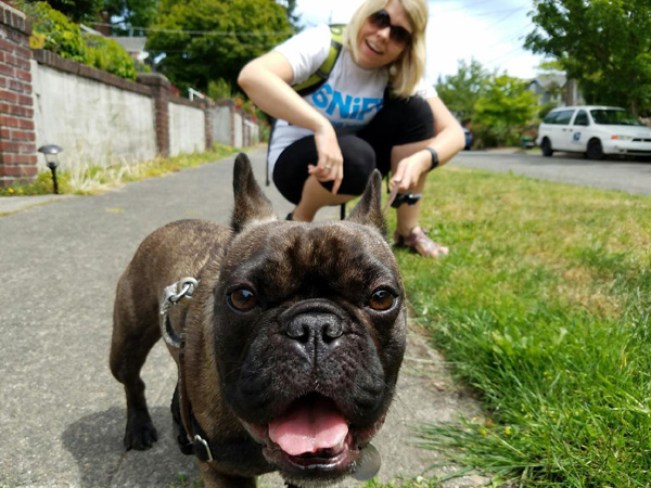 Penny The French Bulldog And Christine From SNIFF