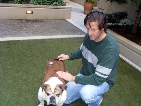 Sniff Seattle Dog Walkers, Greg Valentine, Cornbread