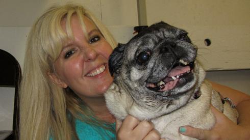 Pug Gala, Seattle Pug Rescue, Sniff Seattle Bellevue Dog Walkers