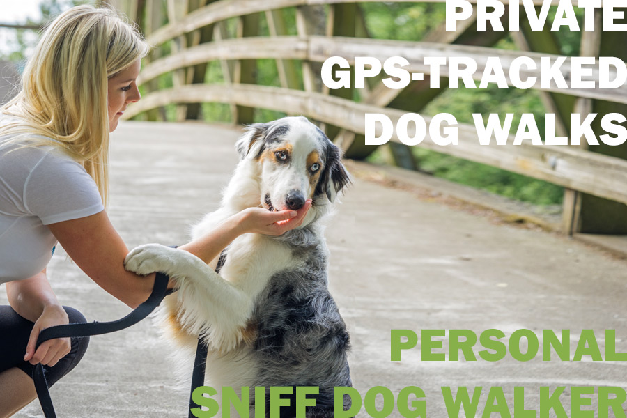 Private GPS-Tracked Dog Walks. Personal Sniff Dog Walker.