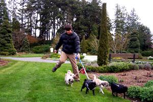 Sniff Seattle, Greg Valentine, Woodland Park Rose Garden