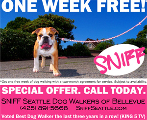 Get One Free Week Of Dog Walking From SNIFF Seattle Dog Walkers - Bellevue